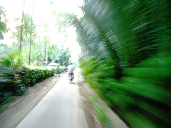 Conduongluagao14