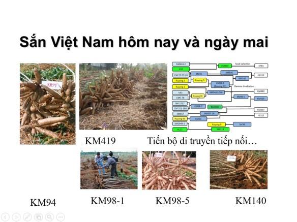 San Vietnam hom nay va ngay mai
