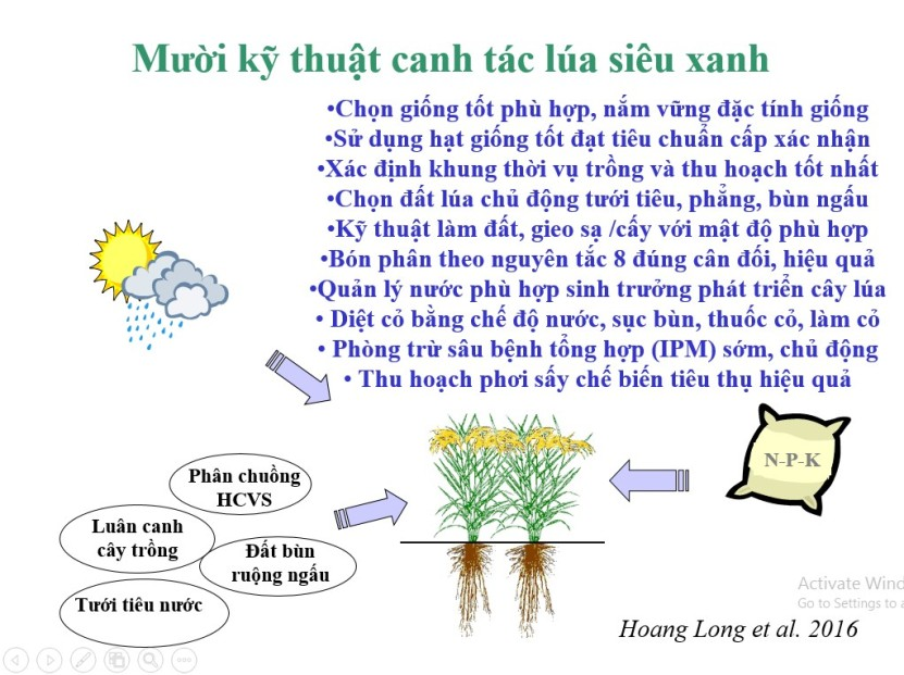 LuaSieuXanh VietNam4