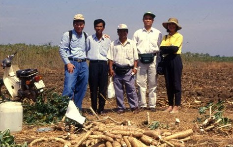 Cassava and Vietnam Now and Then 101