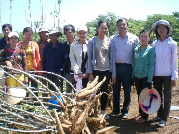 Cassava and Vietnam Now and Then 102