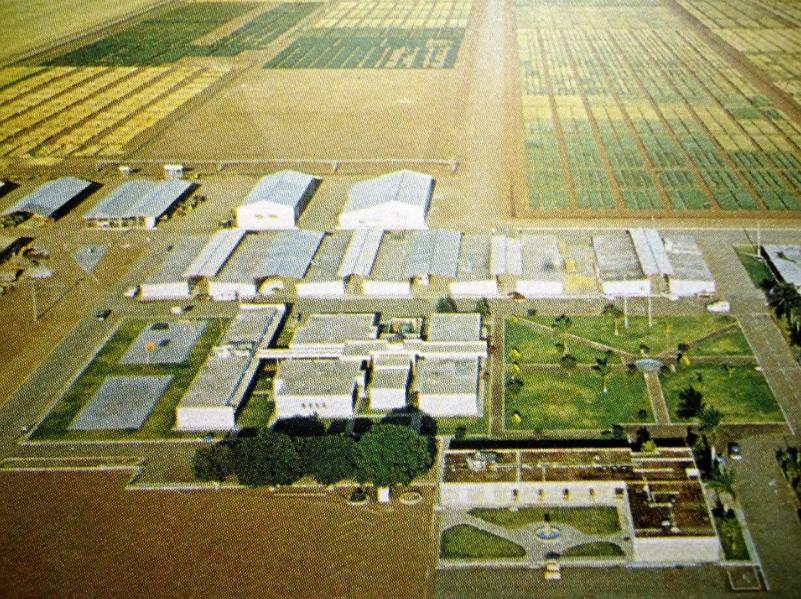 Norman Borlaug nha khoa hoc xanh 3