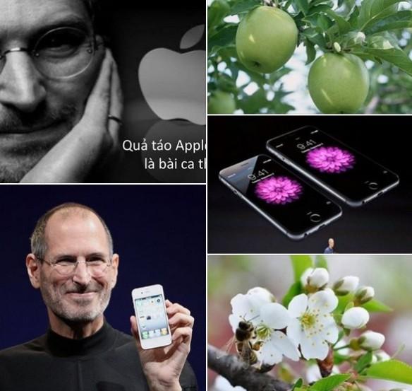 Quả táo Apple Steve Jobs